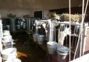 Par lagūnas tipa krātuvēs veicamo monitoringu